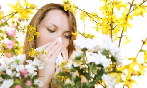 Як позбутися від закладеності носа при алергії