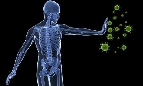 Які препарати застосовують для підвищення імунітету