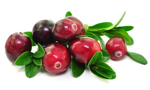 Необхідні вітаміни для здоров'я можна знайти в журавлині